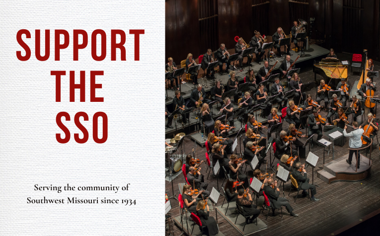 Support the SSO