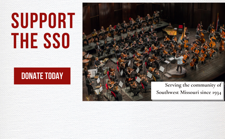 support the sso webslider